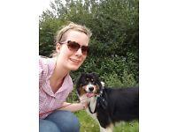121 Professional Pet Sitting and Walking