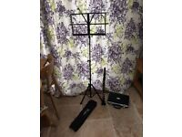 Odyssey Clarinet and Windsor music stand