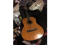 Homada acoustic guitar and bag