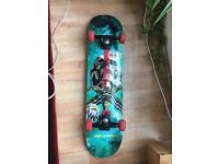 Powell-Peralta complete Skateboard (basically new)