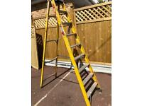 Commercial Industrial 8 Step Ladder