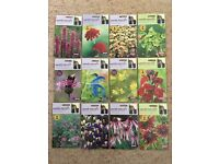 Johnsons Sarah Raven's Flower Seeds - 12 unopened packets
