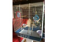SOLD. Bird cage with stand
