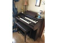 SIEL Double Organ and Stool