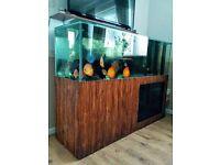 350 l Aquarium fish tank for sale