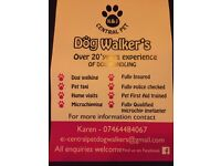 K & j central pet dog walker's
