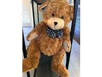 Darcy Bear