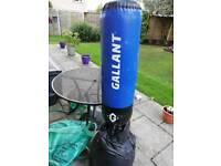 Gallant free standing punch/kick bag