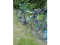 BIKE FOR SALE -- MY LTD EDITION CARRERA ROAD BIKE - NOW REDUCED PRICE !