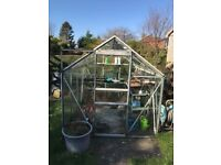 Greenhouse and seed trays for sale