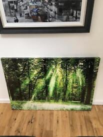 Large woodland canvas