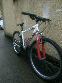 """Specialized Rockhopper 17"""" MTB hardtail bike UpCycles 89 ref dh"""