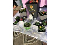 Garden pots with flowers