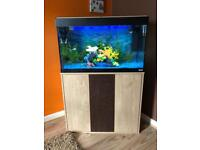 Fluval fish tank and stand