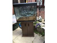 Fish tank with lots of extras