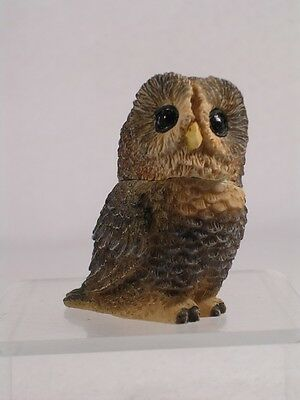 Harmony Kingdom Ball Pot Bellys / Belly 'Spotted' Owl Bird  #PBZOW10 New In Box