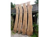 Rare, Very Large Seasoned Walnut Boards, 15 yrs air dried
