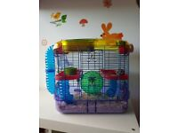 *Free* Russian Dwarf Hamsters and cages
