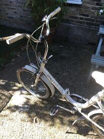 Folding Raleigh bike