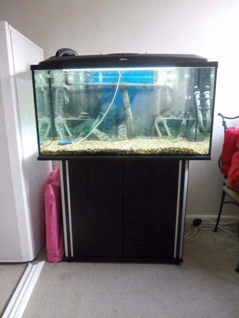 Fish tank external filter - 200 Ltr Fish Tank Cabinet External Filter Plus Extras Excellent Condition
