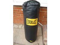 Punch Bag - Everlast