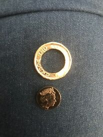 Extremely rare one pound coin