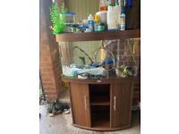 Jewel 160 tropical fish tank