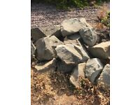 *Free* decorative rocks to collect