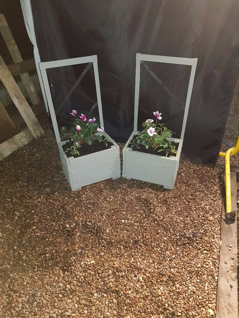 handmade planters with winter flowers *BUY 1 GET 1 HALF PRICE* all ready to go now..!!