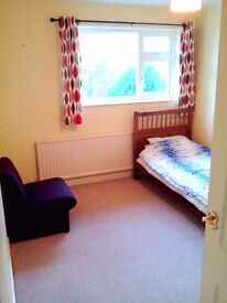 Double room to rent in lovely quiet house in Weston Super Mare