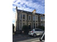 Mannamead - one bed flat with fabulous view to sea & Mount Edgecombe