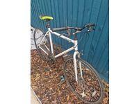 Royal London bike