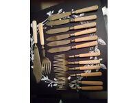 vintage resin handle cutlery