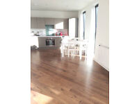 Luxury two bed two bath aprtment in East India Dock