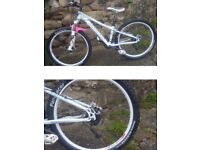Marin bike with hope etc extras added
