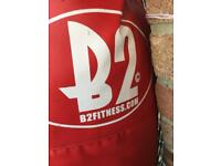 B2 fitness Punch Bag
