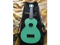 Brand new ukulele by Makala Waterman in a lovely mint green colour
