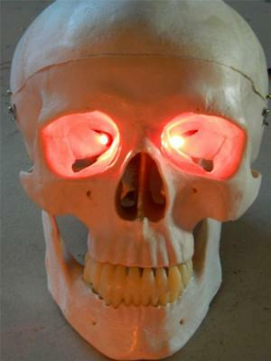 Halloween Red Skull Mask (HALLOWEEN PROP RED LED FIRE FLICKER EFFECT EYES FOR MASK OR)
