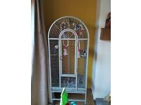 parrot cage at fabulous price