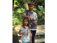 AFTER SCHOOL NANNY needed for 2 cool kids. Relaxed French family near Hammersmith