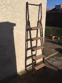 Step ladder / loft ladder