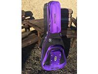 Acoustic guitar case (Ritter)