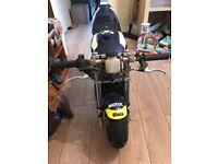 39cc blata mini moto