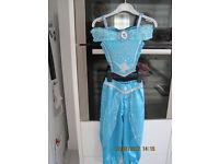 SPARKLY 2 PIECE JASMINE (ALADDIN) OUTFIT Age 3-4 - BEAUTIFUL! + accessory ARABIAN PRINCESS DRESS UP!