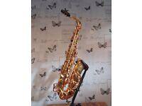 Alto Saxophone - Trevor James Aretmis A1