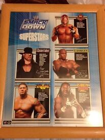2x wwe pictures