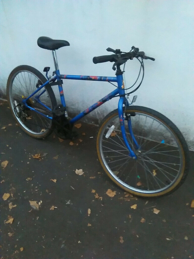Raliegh medium to adult size bike bicycle 15 speed