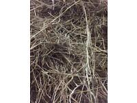 Excellent round bale hay for sale