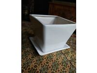 Large indoor planter with drip tray