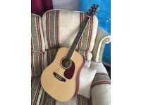 Ashton DM25NT Acoustic Guitar